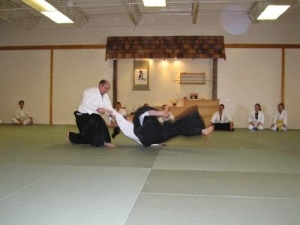 aikido grand rapids mi